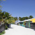 Local Island Visits